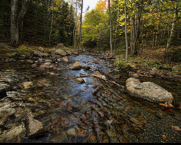Landscapes Poster featuring the photograph Acadia Waterscape by Alexander Mendoza