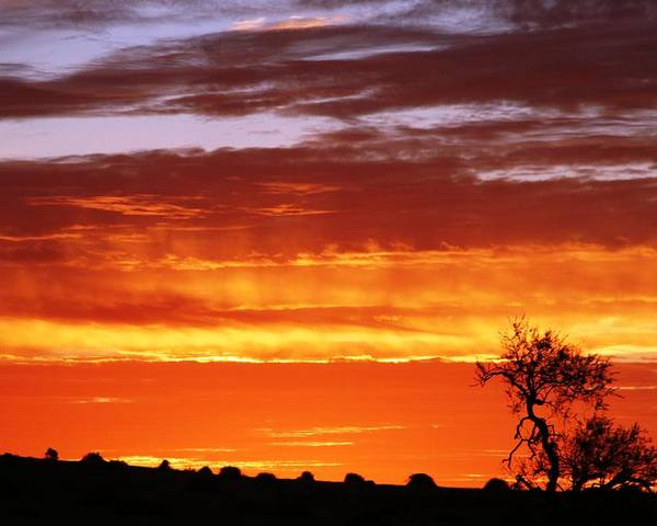 Sunset Poster featuring the photograph African Sunset by Linda Russell