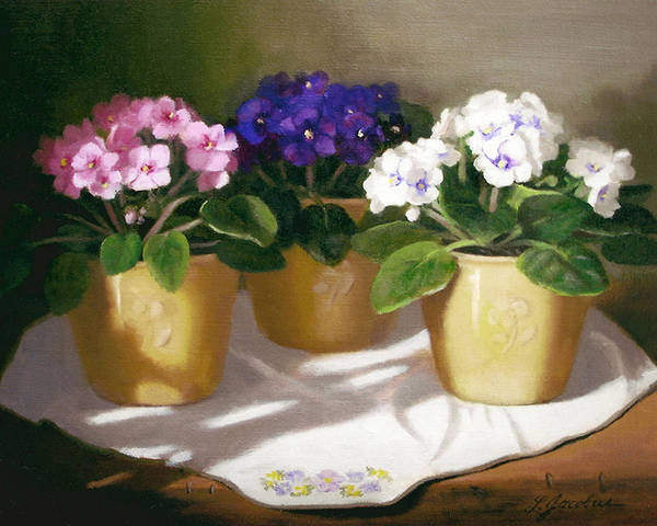 African Violets Poster featuring the painting African Violets by Linda Jacobus