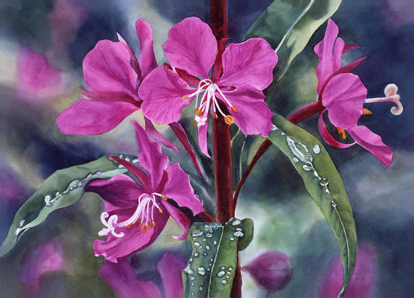 Flower Poster featuring the painting After The Rain by Sharon Freeman