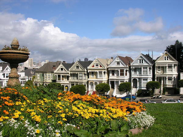 Architecture Poster featuring the photograph Alamo Square Homes by C Thomas Cooney