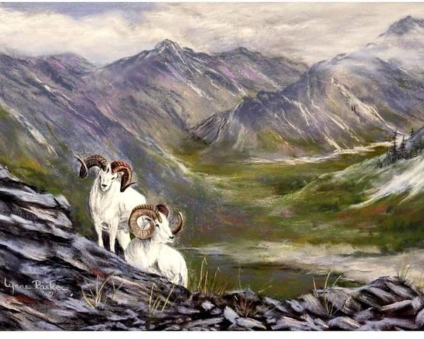 Alaskan Dalls Sheep Poster featuring the pastel Alaskan Dalls Sheep by Lynne Parker