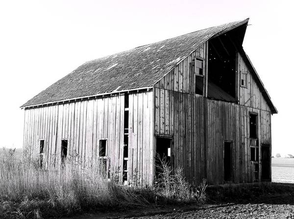 Barn Poster featuring the photograph Albert City Barn 3 by Julie Hamilton