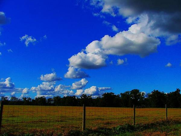 Clouds Poster featuring the photograph All About Clouds by Judy Waller