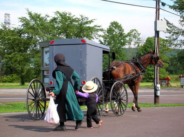 Amish Poster featuring the photograph Amish Mother And Son by George Jones