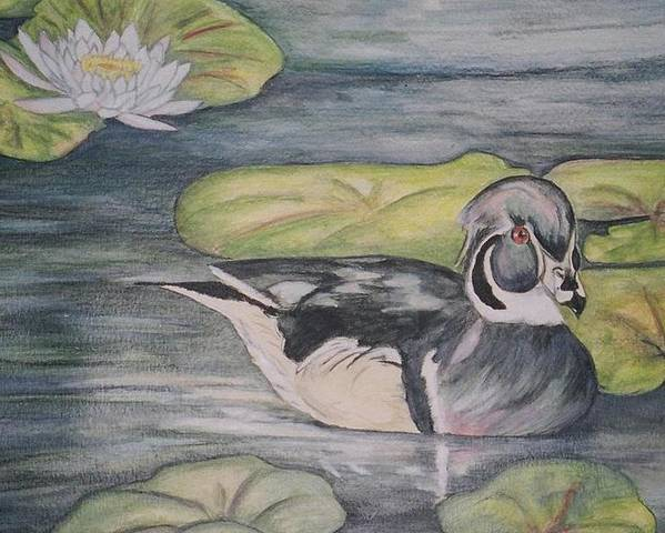 Wood Duck Poster featuring the painting Among The Lillypads by Debra Sandstrom