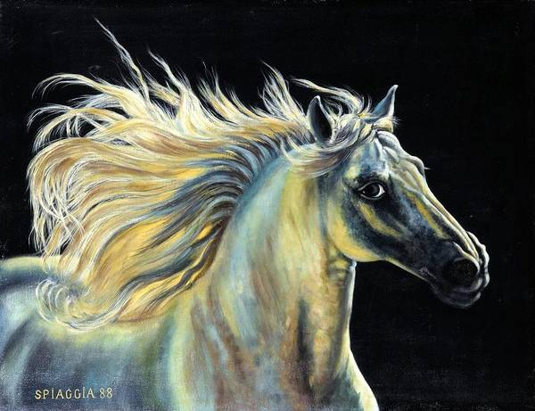 Horse Poster featuring the painting Amour D Etalon by Josette SPIAGGIA