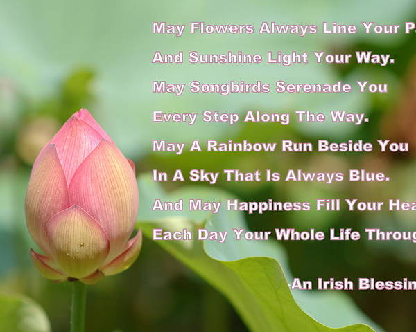 An Irish Blessing Lotus Flower Poster By James Defazio