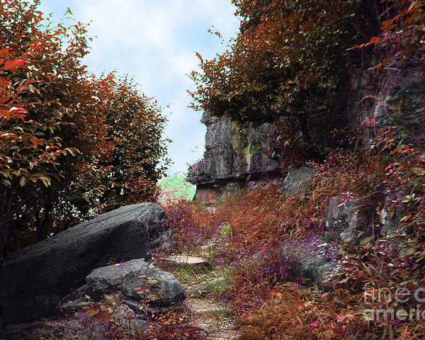 Landscape Poster featuring the photograph Ancient Pathway by Dot Xie