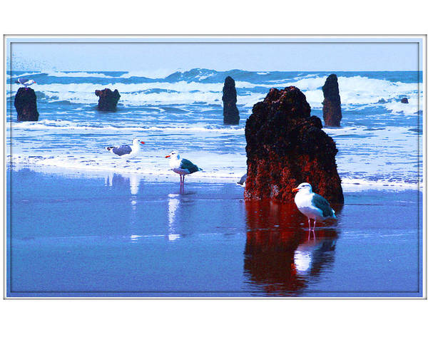 Ancient Trees Poster featuring the photograph Ancient Trees And Seagulls At Neskowin Beach by Margaret Hood