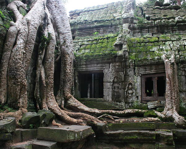 \angkor Wat\ Cambodia \siem Reap\ Historical Ancient Kymer Tree Roots Moss Poster featuring the photograph Angkor Wat by Linda Russell