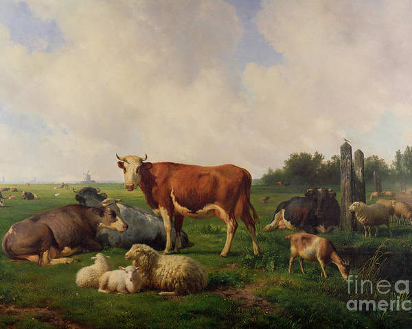 Animals Poster featuring the painting Animals Grazing In A Meadow by Hendrikus van de Sende Baachyssun
