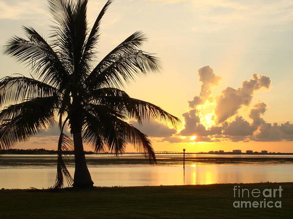 Sunset Poster featuring the photograph Another Day In Paridise by Robyn Leakey