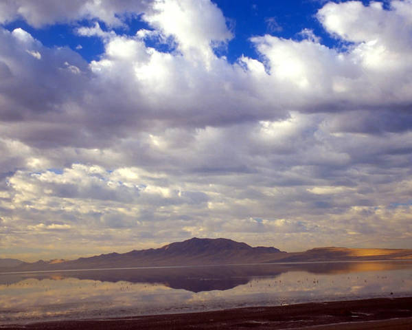 Great Salt Lake Poster featuring the photograph Antelope Island 1 by Steve Ohlsen