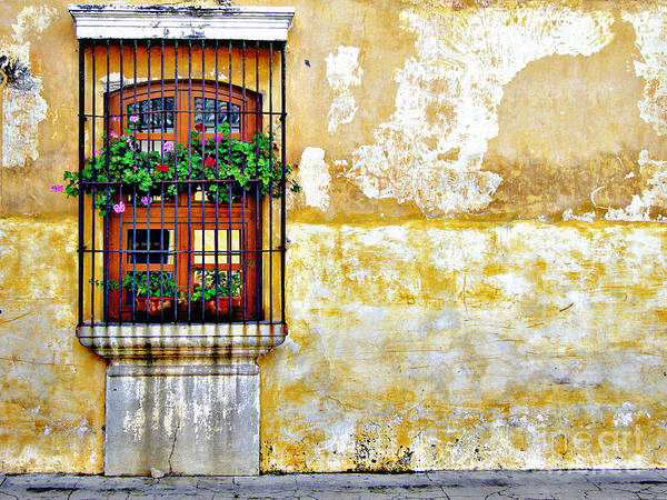 Window Poster featuring the photograph Antigua Window by Derek Selander