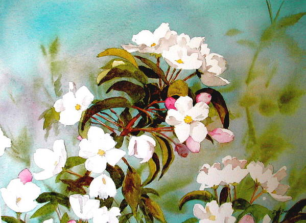Blossoms Poster featuring the painting Apple Blossoms by Faye Ziegler