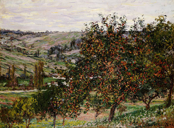 French Poster featuring the painting Apple Trees Near Vetheuil by Claude Monet