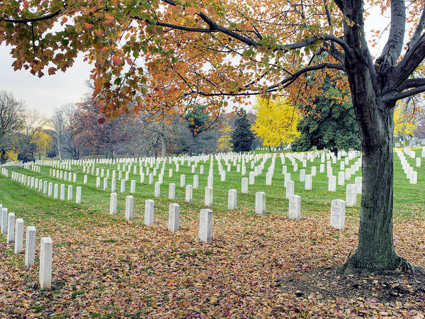 Arlington Poster featuring the photograph Arlington National Cemetery Virginia by Brendan Reals