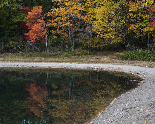 Walden Poster featuring the photograph Around The Bend- Hiking Walden Pond In Autumn by Toby McGuire