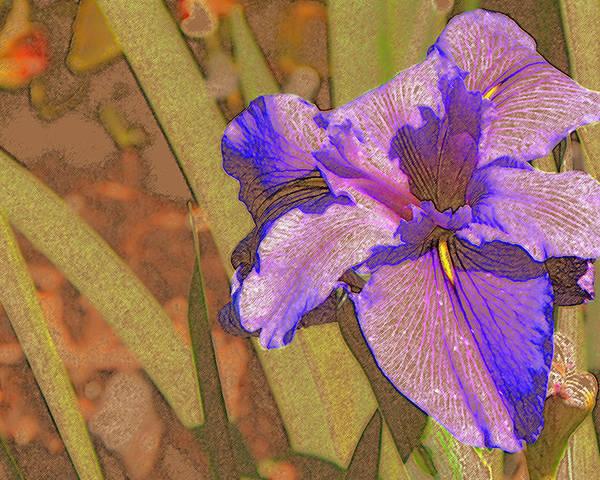 Iris Poster featuring the mixed media Artsy Iris by Rosalie Scanlon