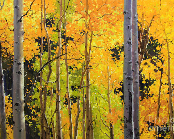 Nature Poster featuring the painting Aspen Trees by Gary Kim