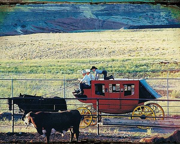 Stagecoaches Poster featuring the photograph At The Cody Rodeo by Jan Amiss Photography