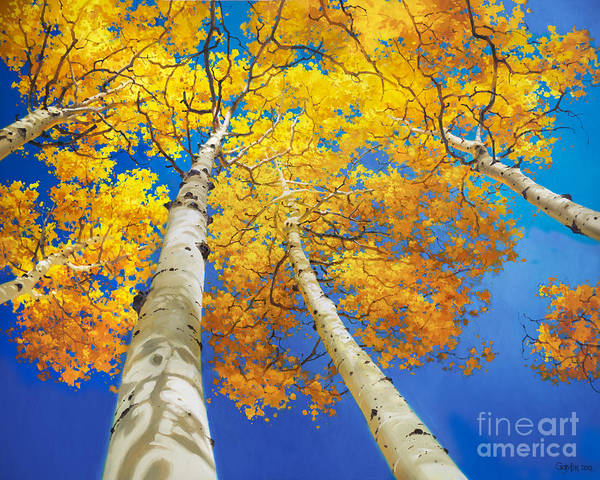 Autumn Aspen Canopy Painting Upward Trees National Park Aspen Colorado Aspen Trees Birch Fall Gary Kim Oil Print Art Nature Scenes Hospital Healing Santa Fe Fall Trees Autumn Season Beautiful Beauty Yellow Red Orange Fall Leaves Foliage Autumn Leaf Color Mountain Oil Painting Original Art Horizontal Landscape Park America Morning Nature Panoramic Peaceful Scenic Sky Sun Travel Vacation View Season Bright Autumn National Park America Clouds Landscape Natural Painting Oil Original Vibrant Blue Sky Poster featuring the painting Autumn Aspen Canopy by Gary Kim