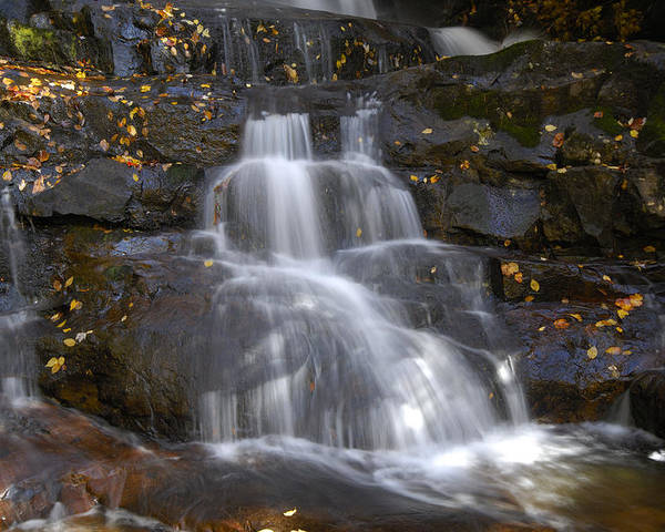 Laurel Falls Poster featuring the photograph Autumn At Laurel Falls by Darrell Young