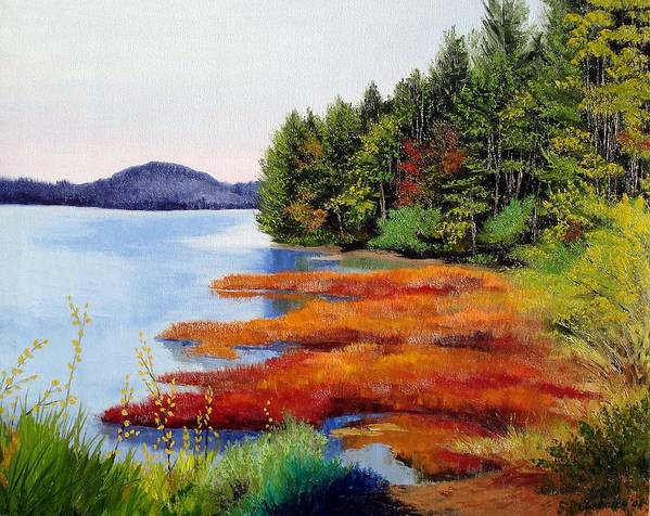 Maine Nature Oil Paintings Original Art Poster featuring the painting Autumn Bay Marsh by Laura Tasheiko
