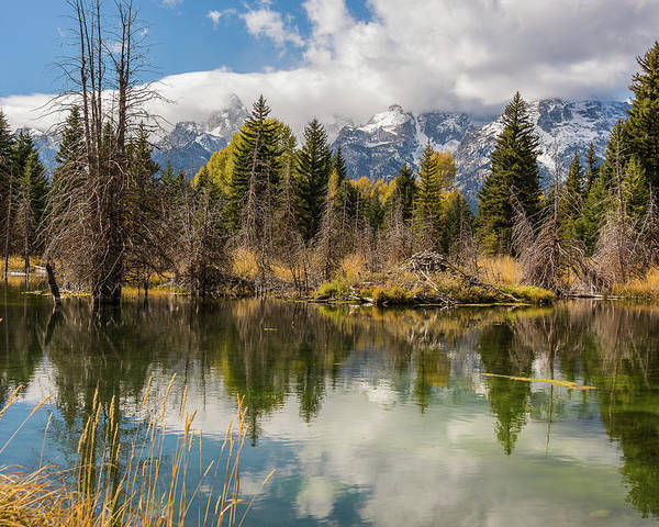 Autumn Poster featuring the photograph Autumn Day At Schwabacher's Landing by Yeates Photography