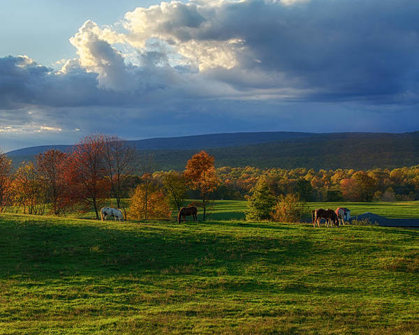 Farm Poster featuring the photograph Autumn Evening by Eleanor Bortnick