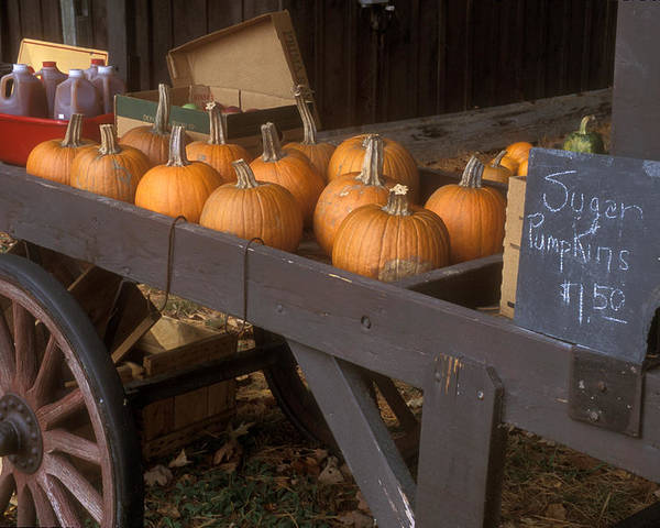 Farm Poster featuring the photograph Autumn Farmstand by John Burk