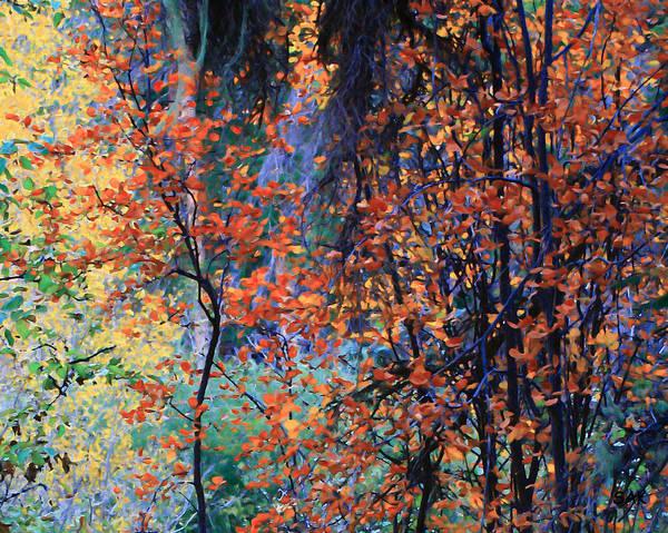 sheryl Karas Poster featuring the digital art Autumn Forest by Sheryl Karas