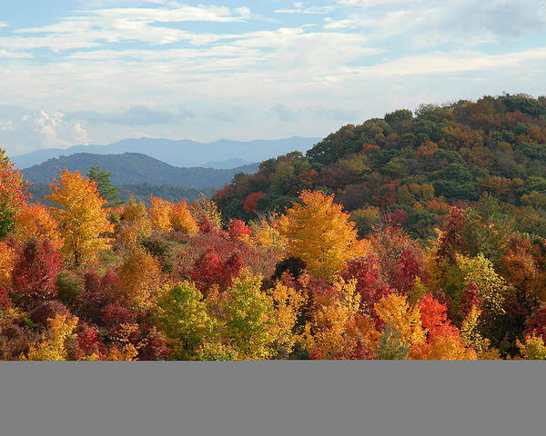 Autumn Color Poster featuring the photograph Autumn Glory by Alan Lenk