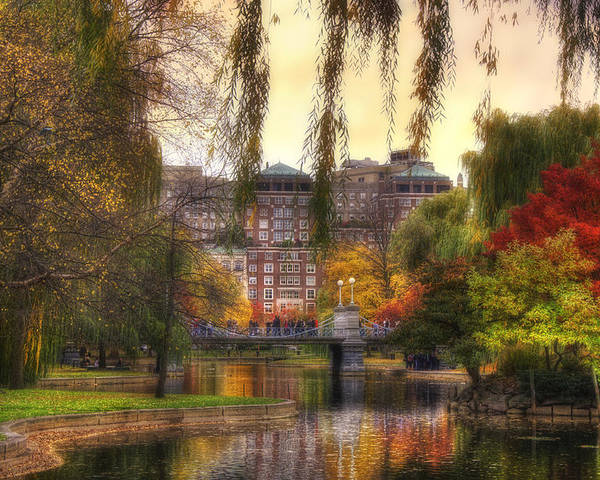 Willow Poster featuring the photograph Autumn In Boston Garden by Joann Vitali