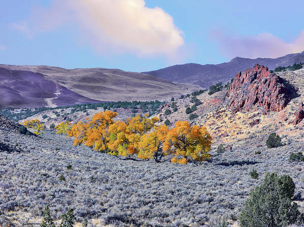 Dry Valley Poster featuring the photograph Autumn Landscape In Northern Nevada. by Greg Chapel