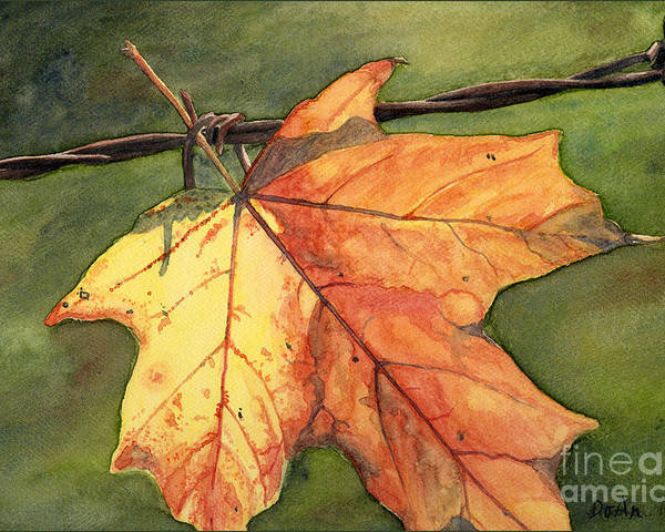 Autumn Poster featuring the painting Autumn Maple Leaf by Antony Galbraith