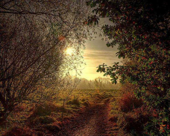 Autumn Poster featuring the photograph Autumn Mist by Kim Shatwell-Irishphotographer