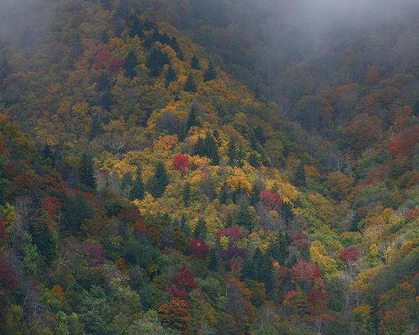 Landscape Poster featuring the photograph Autumn Mountains by James Jones