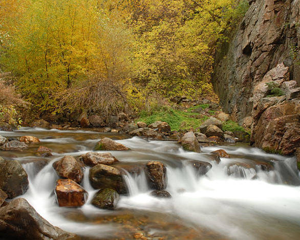 Provo River Poster featuring the photograph Autumn On The Provo River by Dennis Hammer