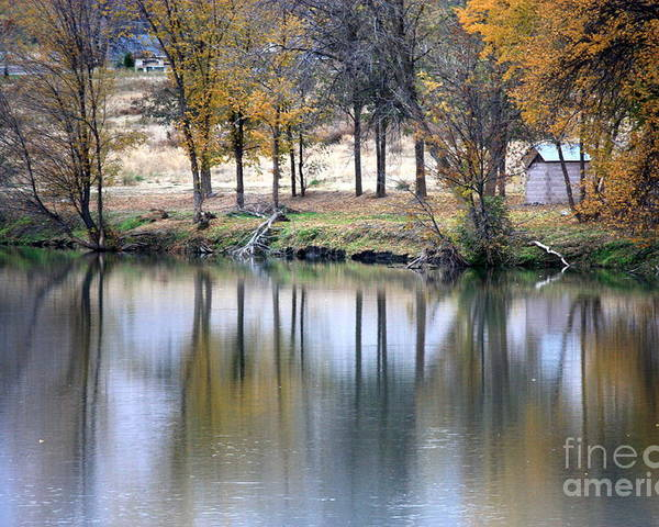 Fall Reflection Poster featuring the photograph Autumn Reflection 16 by Carol Groenen