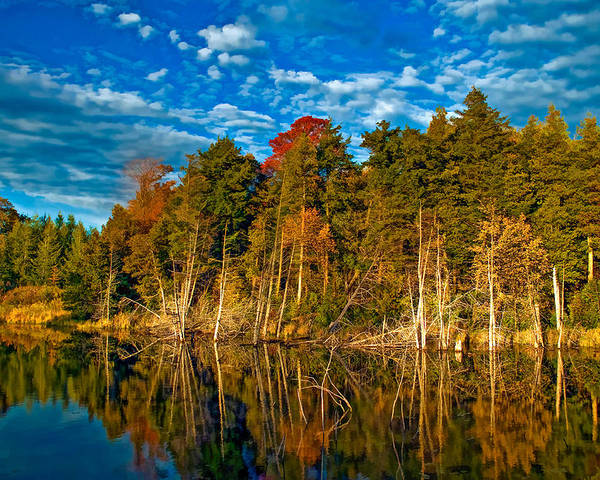Landscape Poster featuring the photograph Autumn Reflection II by Steve Harrington