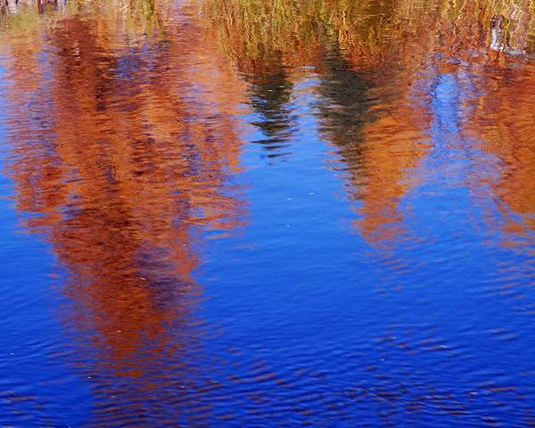 Prince Albert National Park Poster featuring the photograph Autumn Reflection by Larry Ricker