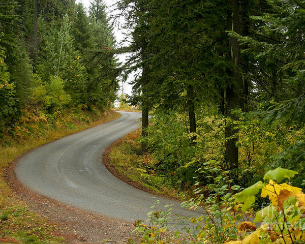Road Poster featuring the photograph Autumn Road by Idaho Scenic Images Linda Lantzy
