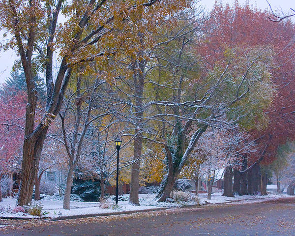 Country Poster featuring the photograph Autumn Snow by James BO Insogna