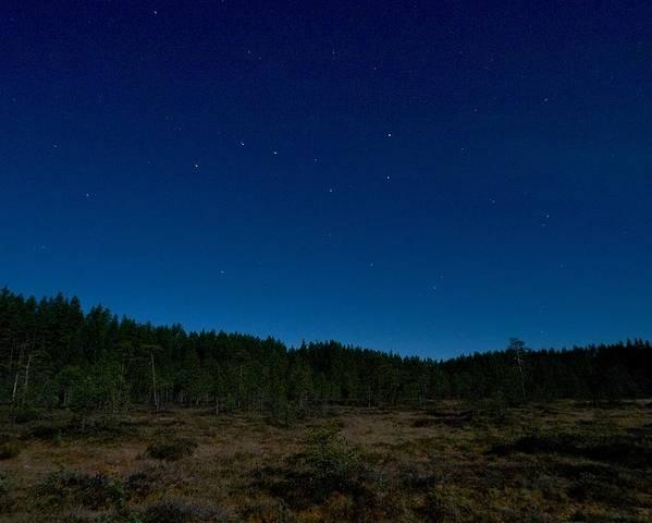 Lehtokukka Poster featuring the photograph Autumn Stars by Jouko Lehto