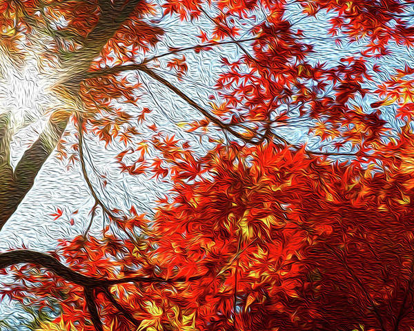 Abstract Poster featuring the digital art Autumn Sun by Les Cunliffe