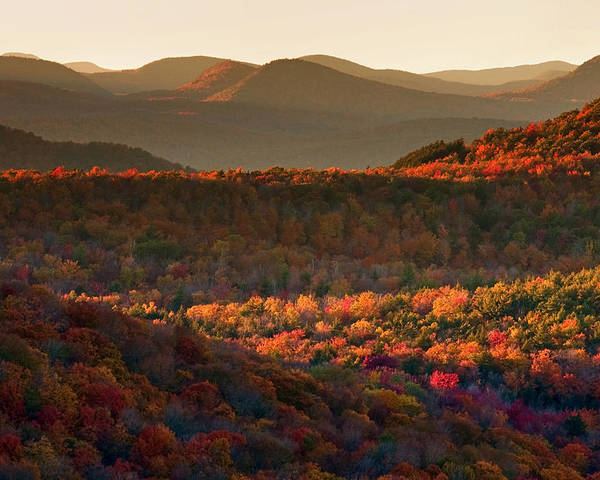 Adirondacks Poster featuring the photograph Autumn Tapestry by Neil Shapiro