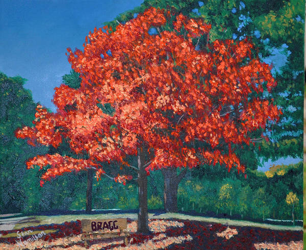 Autumn Fall Trees Poster featuring the painting Autumn Tree by Stan Hamilton