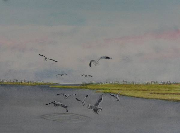 Seagulls Poster featuring the painting Avalon Pointe by Haldy Gifford